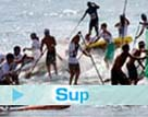 Stand Up Paddle boards - Surfing
